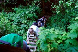 West coast trail hike